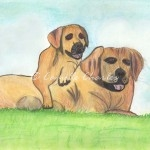 Watercolor, Pastels and Colored Pencil - Dogs
