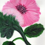 Acrilic Paint - Pink Carnation