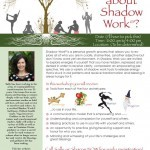 Shadow Work Flier Design