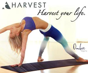 Harvest-Banner-300x250-2