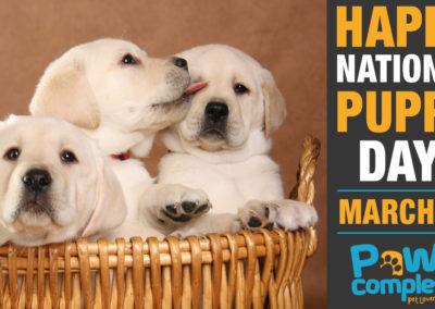 PawsCom_FB-PuppyDay